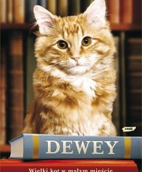 """DKK – Viki Myron """"Dewey Wielki kot w małym mieście"""""""