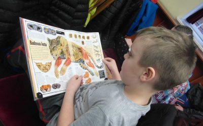 """""""Światowy Dzień Kota"""" w Czytelni dla Dzieci"""