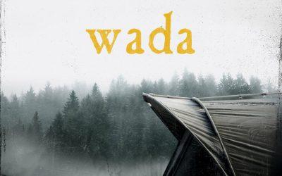 Robert Małecki – Wada